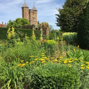 https://www.nationaltrust.org.uk/sissinghurst-castle-garden